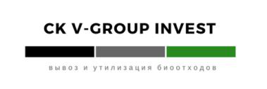 CK V-GROUP INVEST